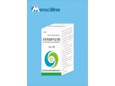 注射用盐酸甲氯芬酯0.1g