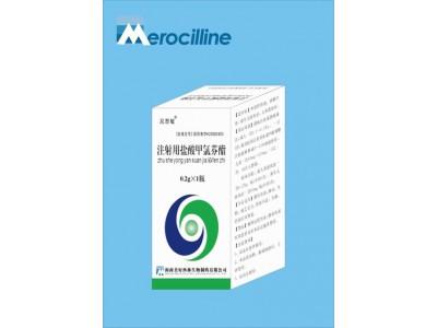 注射用盐酸甲氯芬酯0.2g
