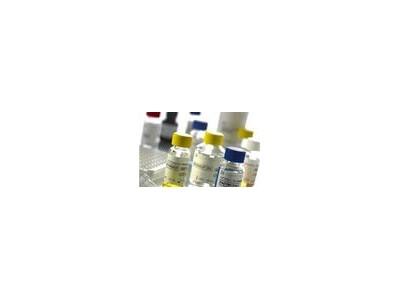 IHC试剂盒