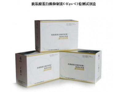 胱氨酸蛋白酶抑制素C(Cys-C)检测试剂盒