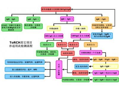 TORCH感染系列产品检测