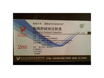 胞磷胆碱钠注射液