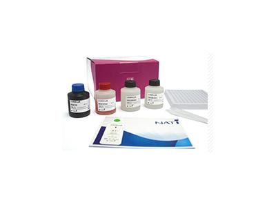 自身免疫肝病抗体谱检测试剂盒