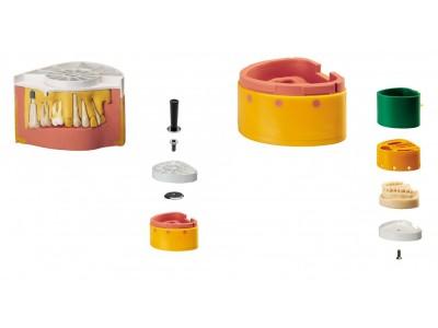 硅橡胶翻模模具