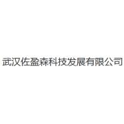 武汉佐盈科技发展有限公司