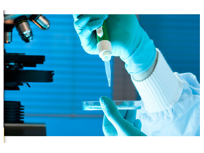 """用于人类细胞""""安全港""""位点转基因整合的靶向整合(TI)试剂盒"""