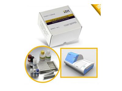 单纯疱疹病毒2型IgG抗体检测试剂盒