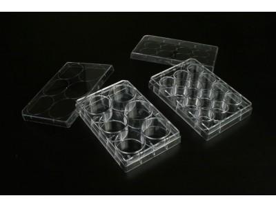 TCP001012 一次性细胞培养板 12孔 未表面处理 1块每盒 50块每内箱 100块每箱