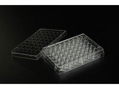 TCP011048 一次性细胞培养板 48孔 表面处理 1块每盒 50块每内箱 100块每箱
