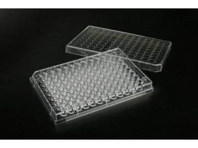 TCP010096 一次性细胞培养板 96孔 表面处理 1块每袋 50块每内箱 200块每箱