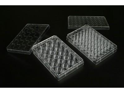 TCP010024 一次性细胞培养板 24孔 表面处理 1块每袋 50块每内箱 200块每箱