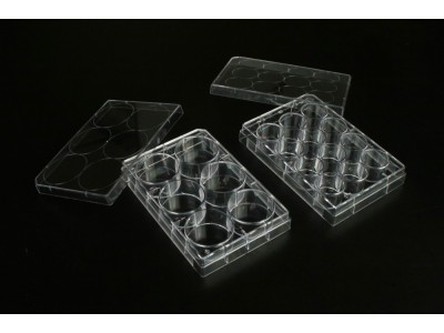 TCP010012 一次性细胞培养板 12孔 表面处理 1块每袋 50块每内箱 200块每箱
