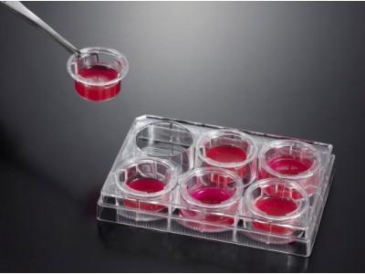 TCS003024 细胞嵌入皿  8.0um 直径6.5mm  PC 膜 12个/板,48个/箱