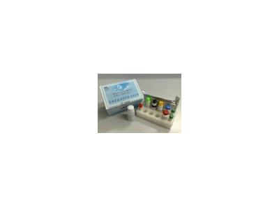 总蛋白(TP)测定试剂盒BS300包装
