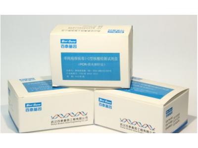 乙型肝炎病毒定量核酸测定试剂盒