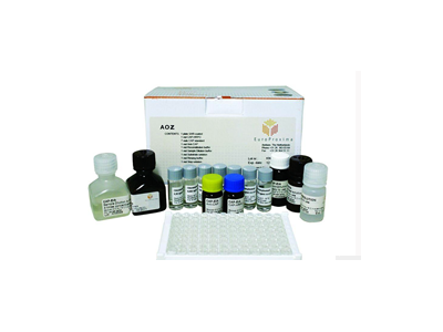 抗卵巢抗体诊断试剂盒