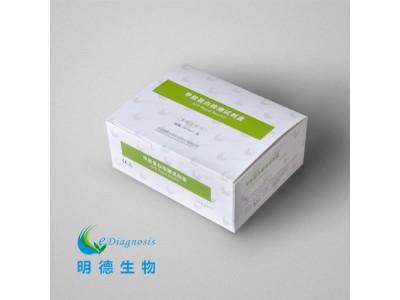 甲胎蛋白检测试剂盒