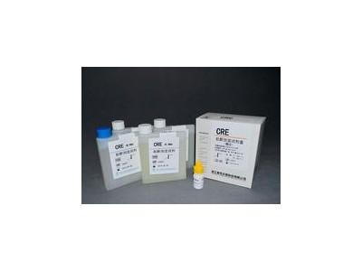 肌酐测定干片(酶法)
