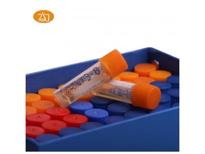 胆汁七叶苷试剂(BE)