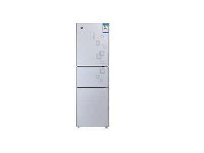 冰箱BCD-205EG/