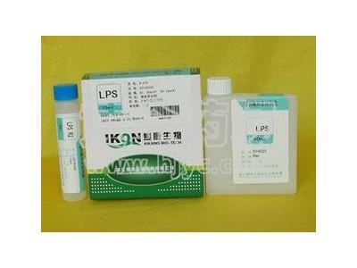 脂肪酶测定干片(比色法)