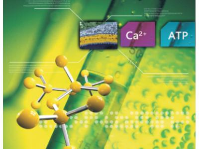 ATP(化学发光法)、Ca2+(荧光法)检测试剂盒