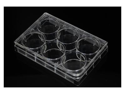 6孔细胞培养板