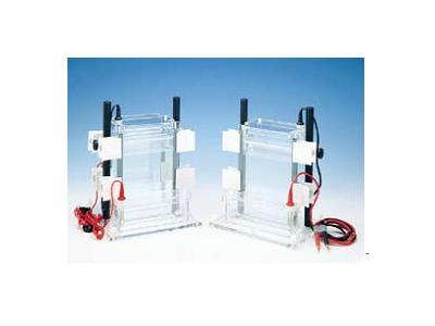 可调式单/双面垂直电泳槽ASG