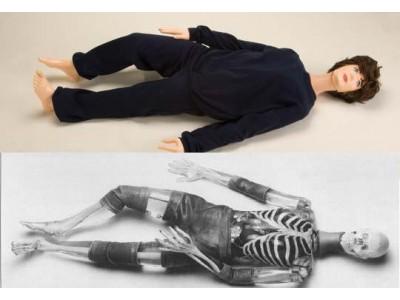 X射线仿真人教学模体X射线模拟人