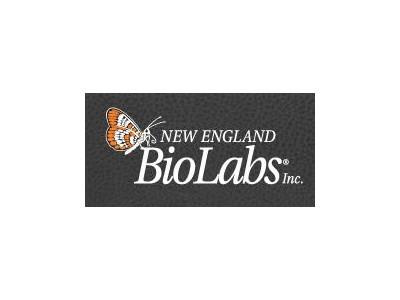 R0174LBln I 酶