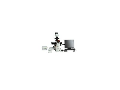 Nikon C2 Plus激光共聚焦显微镜