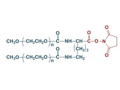 mPEG2-NHS 分枝单甲氧基聚乙二醇 琥珀酰亚胺羧酸酯