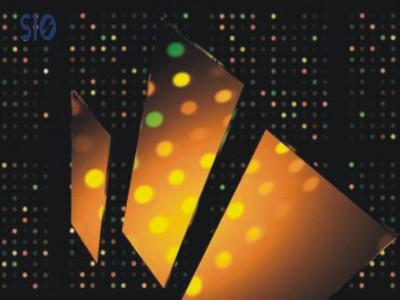 蛋白质芯片用于信号检测分析 HiSens Slides