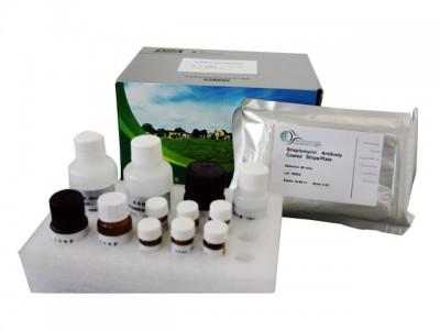 小鼠癌胚抗原(CEA)酶联免疫分析试剂盒