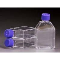 斜颈细胞培养瓶