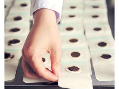 三伏贴膏药生产厂家 贴牌加工 朱氏药业集团生产厂家电话15506567930