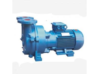 2BV-5110 直联式水环真空泵
