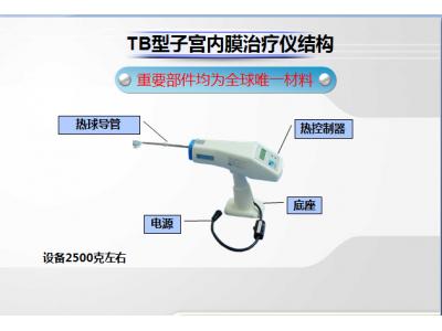 TB型子宫内膜治疗仪