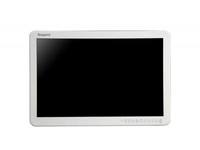MLW-2424C池上医用监视器