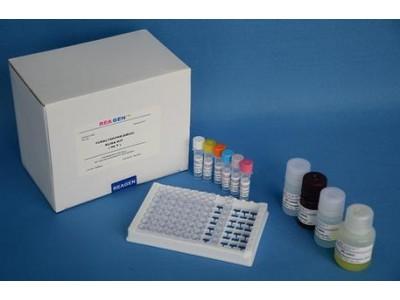 大鼠β淀粉样蛋白1-42(Aβ1-42)酶联免疫分析试剂盒