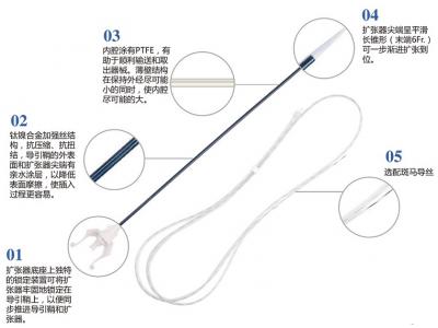 一次性使用输尿管导引鞘