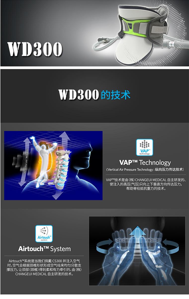 WD300