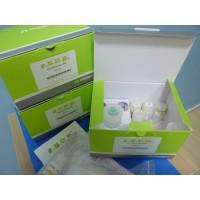 人血管性血友病因子ELISA检测试剂盒
