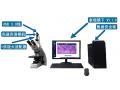 数字病理图像管理软件(泰瑞镜下PC版)
