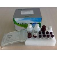 仓鼠白细胞介素-6(IL-6)ELISA试剂盒