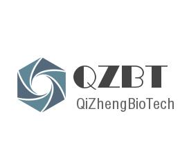 上海齐正生物科技有限公司