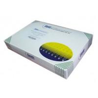 LyoDt®志贺氏菌干燥型荧光PCR检测试剂