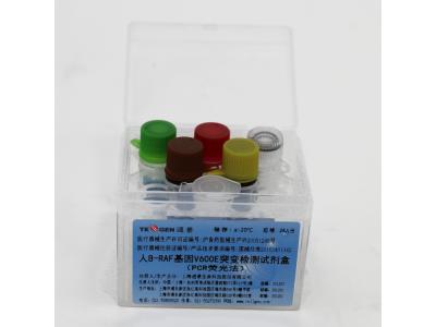 人 B-RAF 基因 V600E 突变检测试剂盒(PCR荧光法)