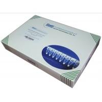 干燥型Taqman荧光定量混合试剂