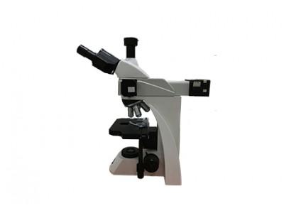荧光显微镜 MF33